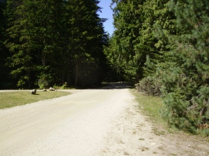 All roads at Mabel Lake are unpaved, so I would advise to be with a group of people or invest in a Free Wheel.