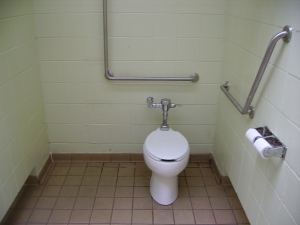 This stall is very spacious and the grab bars make for easy transportation.